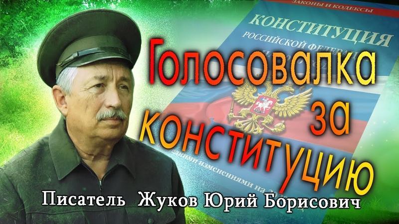 Голосовалка за конституцию Поэт и писатель Жуков Ю Б