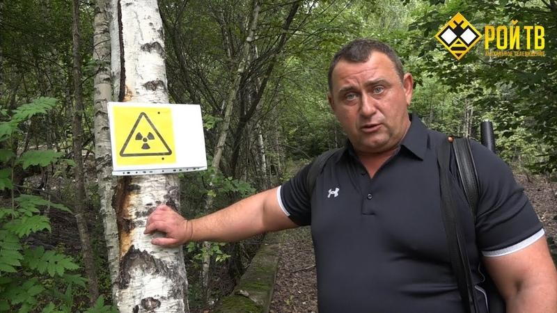 Московский хордовый Чернобыль