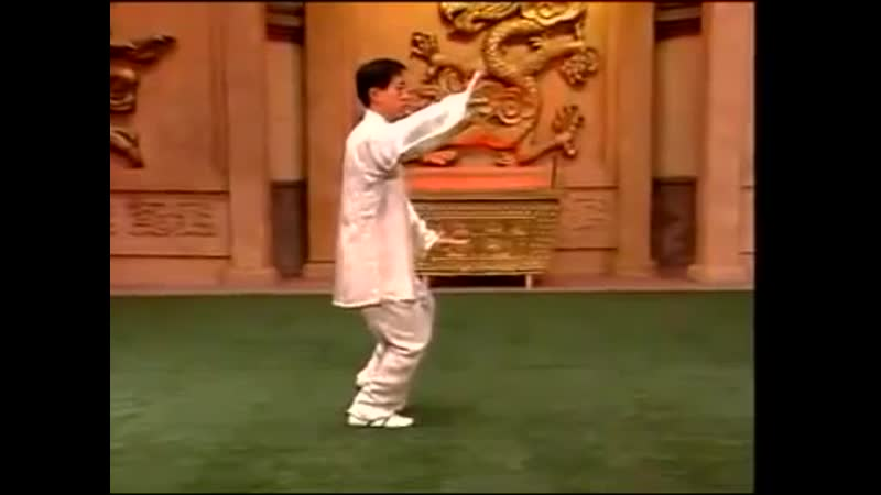 Chen Style Tai Chi Chuan 18 form 陳氏太極拳精要十八式