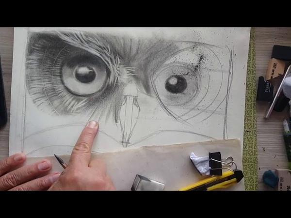 Tutorial Búho en blanco y negro x chamo estudio