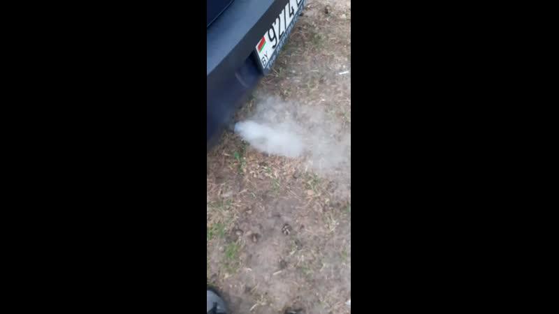 Рено логан Дымит на холодном при прогреве дымоение пропадает