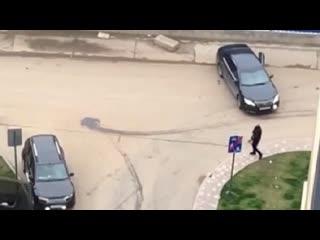 У жилого комплекса на юге Москвы произошла стрельба  видео очевидца