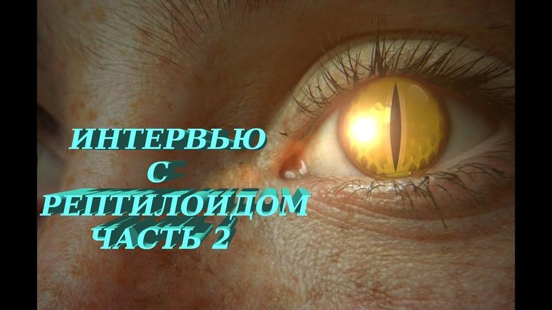 Интервью с Рептилоидом 2. Поправки в конституцию.