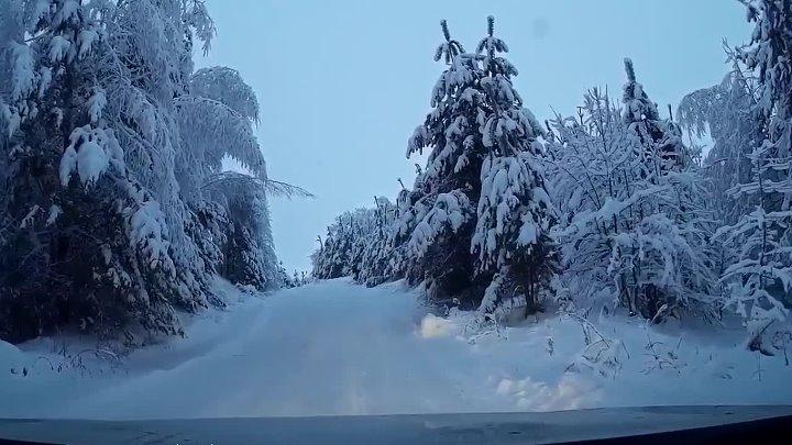 Снег кружится Нежный голос наших воспоминаний А какая Ваша любимая песня про зиму