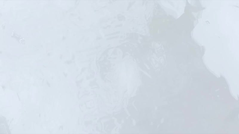 Медосмотр и первые тесты. Динамовцы вернулись после зимнего отпуска {13.01.2021}