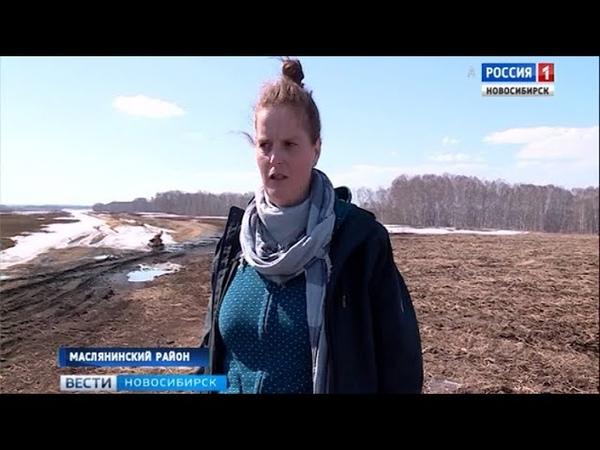 Из Германии в Сибирь с любовью немка агроном работает в одном из хозяйств Маслянинского района