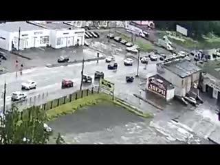 Лось бегает по Вологде.mp4