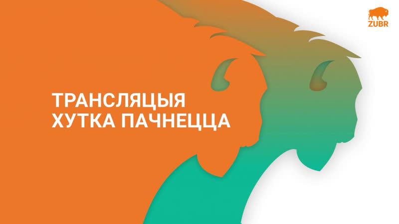 ZUBR Наблюдаем вместе | Выборы 2020