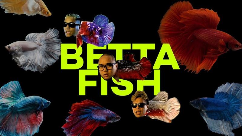 ALLDONE KLAAR BETTA FISH Feat SAYKOJI NGAPZ
