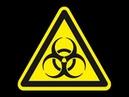 Prof h c Dr mult J Menser Es gibt keine Viren