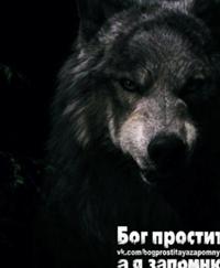 Гаврилин Александр