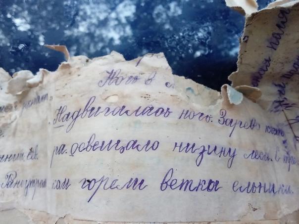 Нижегородка Ирма Калныныш рассказывает:«Соседу на ...
