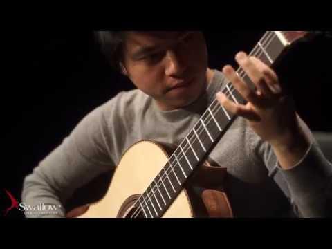 Rain Dang Ngoc Long and Nguyen Thinh played by An Tran on a Swallow Guitar CW50SF