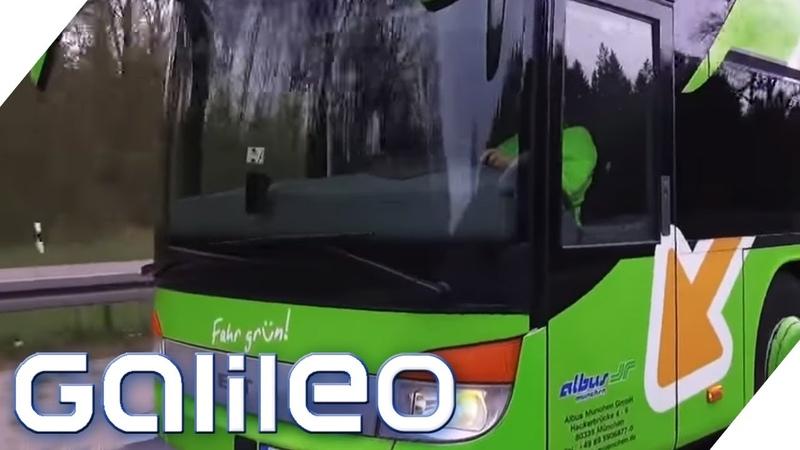 Flixbus 4 Gründe warum Fernbusfahrten so billig sind Galileo ProSieben