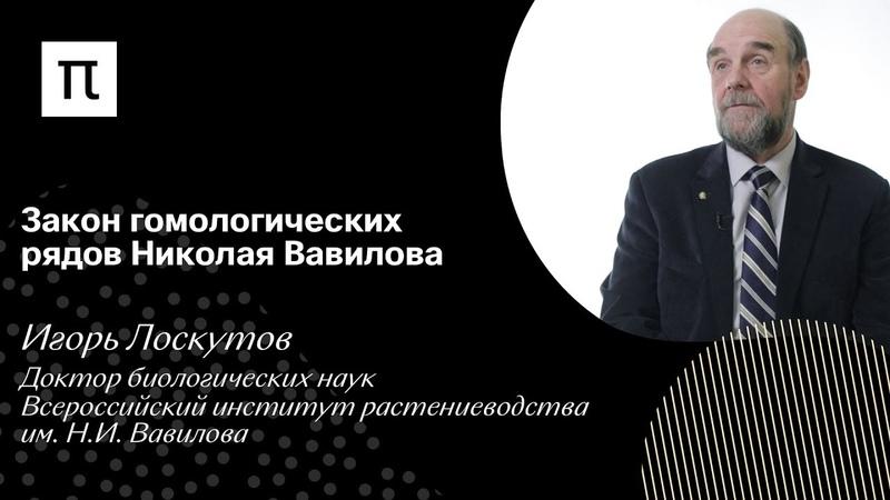 Закон гомологических рядов Николая Вавилова Игорь Лоскутов