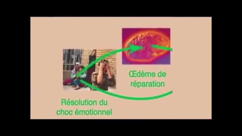 Le Dr Hamer LE MAL A DIT Le MAL s'exprime par les MALADIES DOCUMENTAIRE