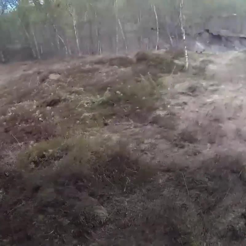 Спасение собаки в Норвегии