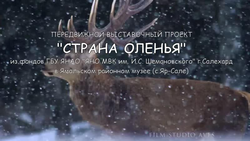 Виртуальная выставочного проекта Страна оленья