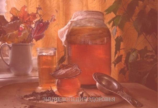 Секреты чайного гриба.