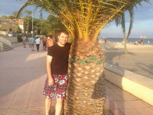Иван Чурсин: В Испании большие ананасы ) и растут они из земли )) и на вкус как пальмы ))