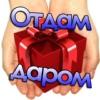 Отдам Даром - Москва