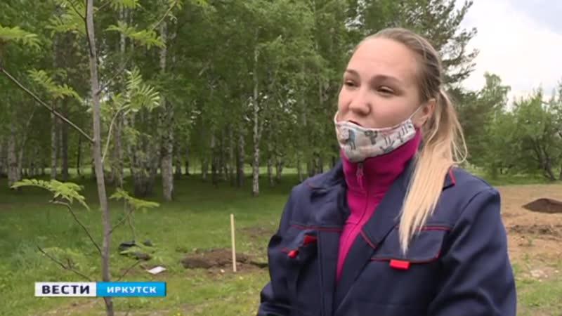 Сад Победы Волонтёры высадили 50 деревьев с именами героев в микрорайоне Солнечном в Иркутске
