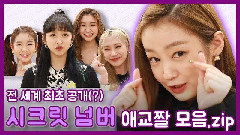 니들모해 세상에 없는 깜찍함 시크릿넘버 극한 애교짤 NewsenTV