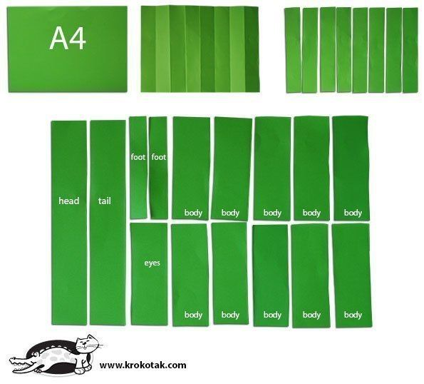БУМАЖНЫЕ КРОКОДИЛЫ Понадобятся:- Лист цветной плотной бумаги формата А4,- Клей, ножницы, фломастер,- Полоска белой бумаги (для зубов).Сложить лист в гармошку, сделав так, чтобы получилось 8
